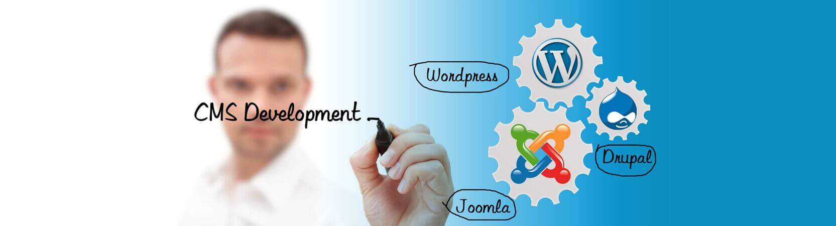 cms-wordpress-development