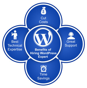 Benefits of Hiring WordPress Expert