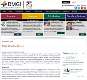 BMGI Global consulting company